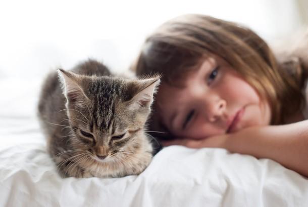 Котенок и ребенок